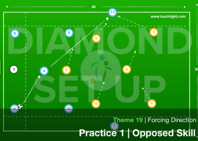 FORCING DIRECTION   SKILL (19-P1)
