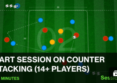 Session 24: Counter Attacking (1 – Beginner)